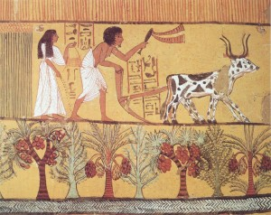 Sowing & Plowing in the Fields, Tomb of Sennedjem